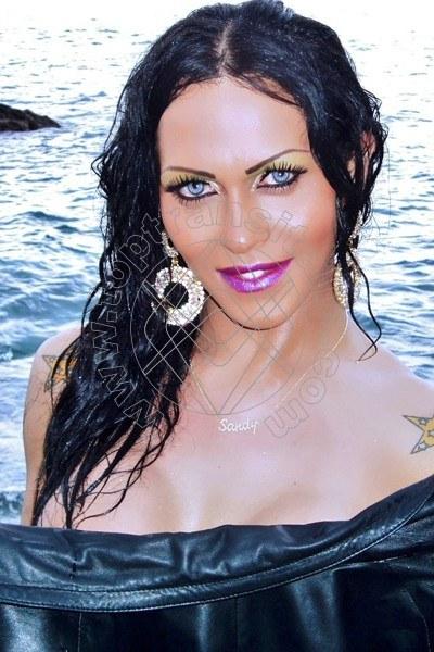 Foto 52 di Sandy Ferraro Fox trans Verona