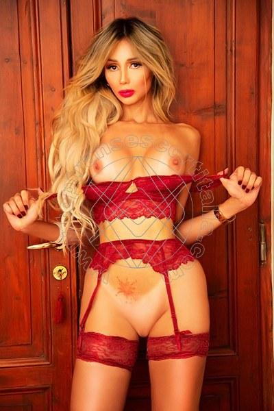 Foto di Stefany Hilton Angel transexescort Viareggio